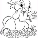 Free Printable Spring Coloring Pages Cool Photos Free Easter Colouring Pages The Organised Housewife