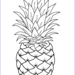 Fruit Coloring Awesome Photography Fruits Coloring Pages Printable