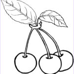 Fruit Coloring Elegant Collection Cherry Pluras Cherries Coloring Pages Ideas