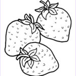Fruit Coloring Inspirational Photos Fruits And Ve Ables Coloring Pages Momjunction
