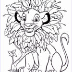 Full Size Coloring Pages Awesome Photography Inspirational Disney Color Pages
