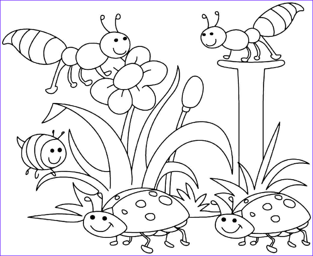 full size spring coloring sheets