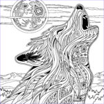 Full Size Coloring Pages Cool Collection Full Size Coloring Pages For Adults At Getcolorings