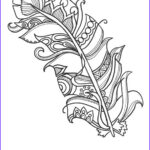 Funny Adult Coloring Pages Luxury Gallery 10 Fun And Funky Feather Coloringpages Original Art Coloring