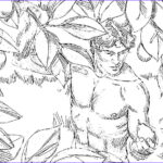 Garden Of Eden Coloring Pages Beautiful Photos Catholic Faith Education May 2012