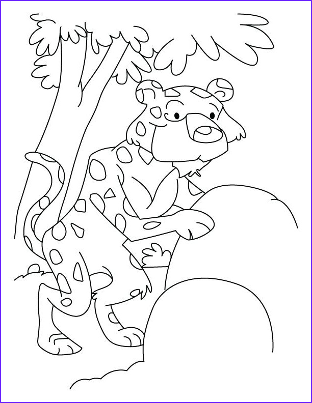 Gecko Coloring Pages Inspirational Photography Leopard Gecko Drawing at Getdrawings