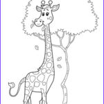 Girafe Coloring Beautiful Gallery Giraffe Coloring Pages Animal