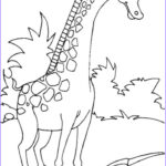 Giraffe Coloring Page New Stock Giraffe Coloring Pages For Kids To Have Fun – Best Apps