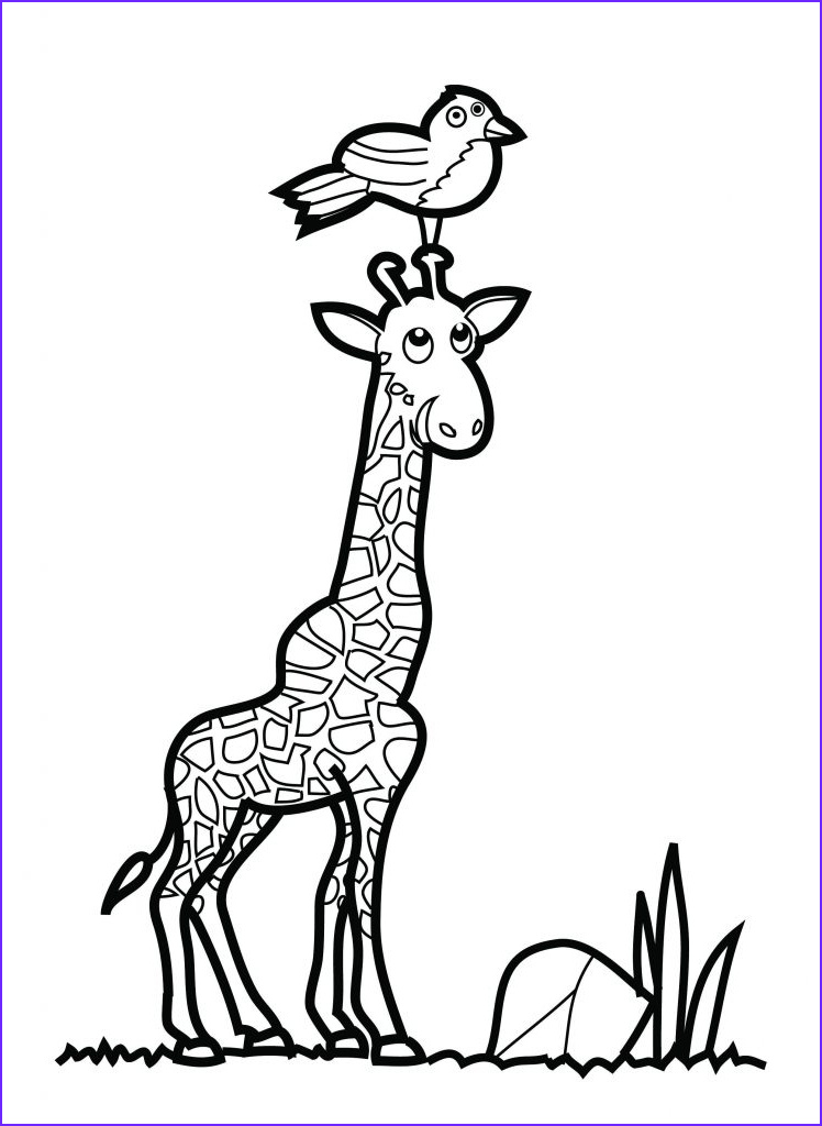 Giraffe Coloring Pictures Best Of Image Free Printable Giraffe Coloring Pages for Kids