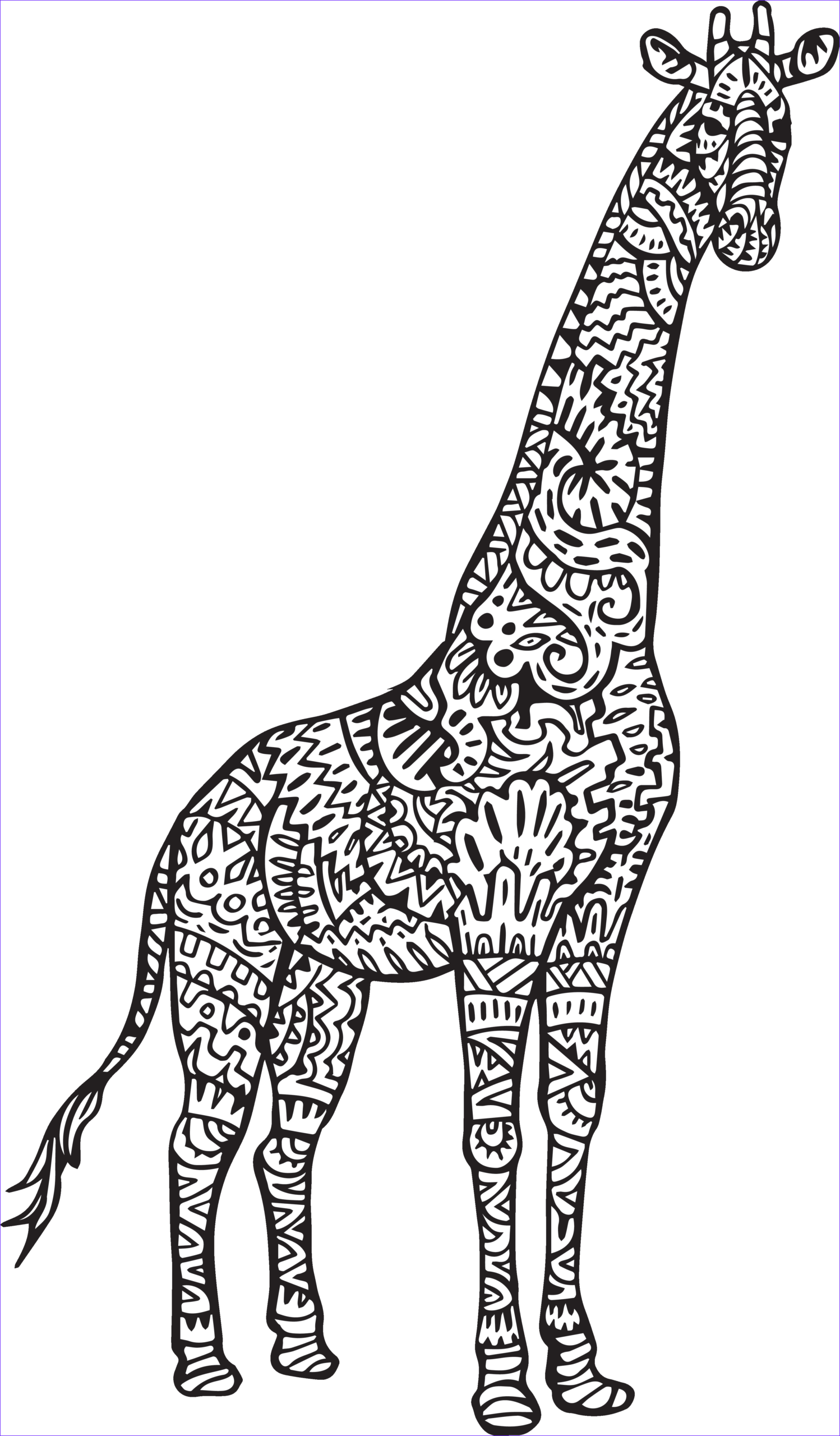 Giraffe Coloring Pictures Best Of Photography April S Baby Has Arrived and Here is the Video Hip