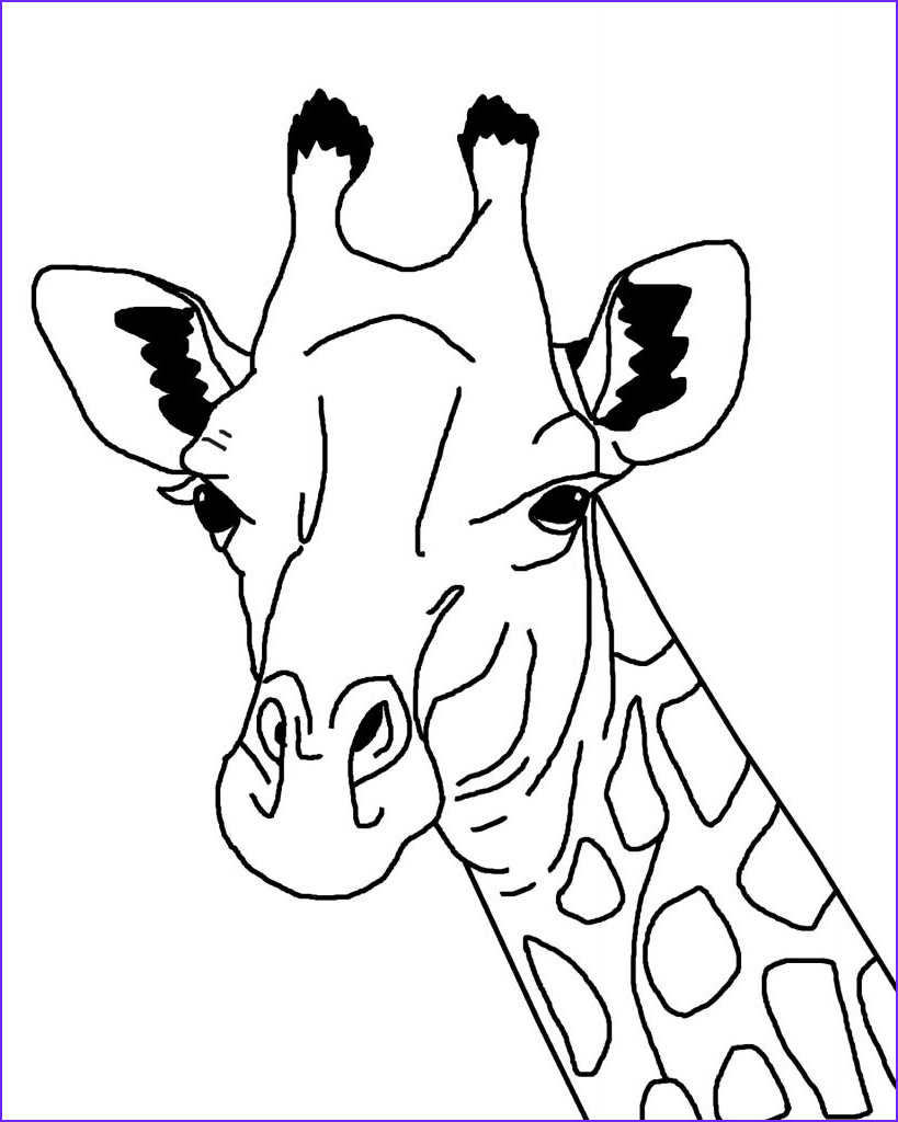 Giraffe Coloring Sheet Elegant Image April S Baby Has Arrived and Here is the Video Hip