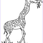 Giraffes Coloring Pages Best Of Photos Giraffe Coloring Pages To Tattoo