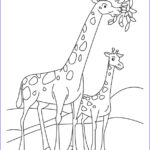 Giraffes Coloring Pages Cool Image Coloring Pages For Kids Giraffe Coloring Pages For Kids