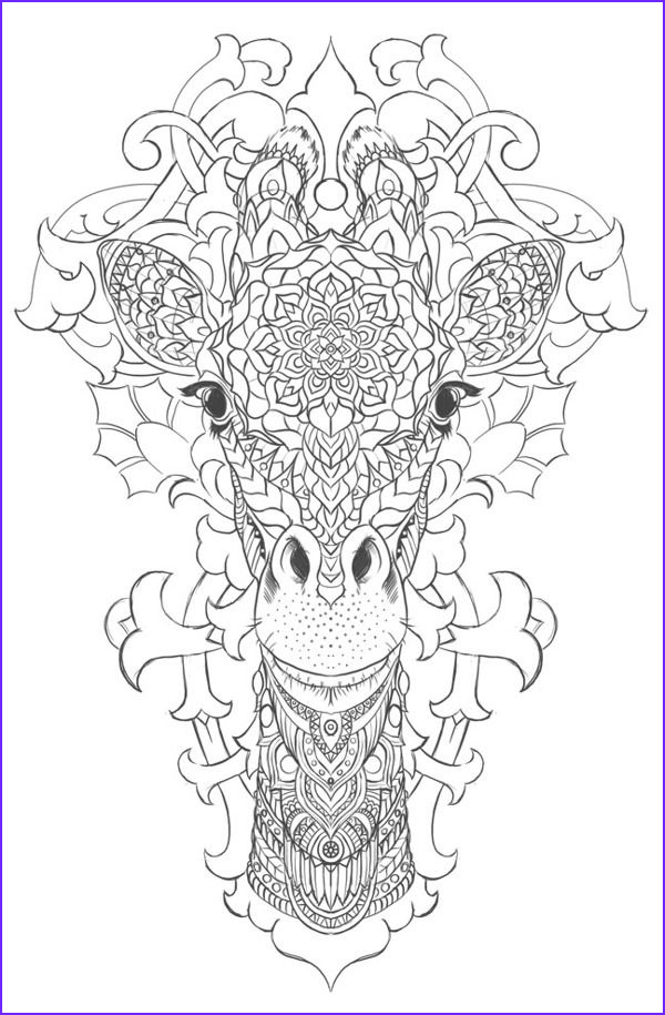 Giraffes Coloring Pages Luxury Photos Giraffe On Behance Coloring Pages