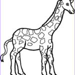 Giraffes Coloring Pages Unique Image Simple Giraffe Outline