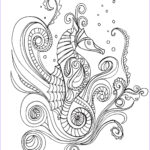 Grown Up Coloring Books Beautiful Gallery Lostbumblebee Grown Up Colouring Sheet Sea Horse