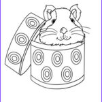 Guinea Pig Coloring Page Awesome Photography Guinea Pig In A Box Coloring Pages Hellokids