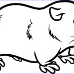 Guinea Pig Coloring Page Awesome Stock Guinea Pig Coloring Pages Best Coloring Pages For Kids