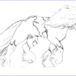 Gypsy Coloring Pages Elegant Photography Gypsy Vanner Horse Coloring Pages Sketch Coloring Page