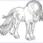Gypsy Coloring Pages Inspirational Gallery Free Lines Gypsy Drum Horse By Applehunter On Deviantart