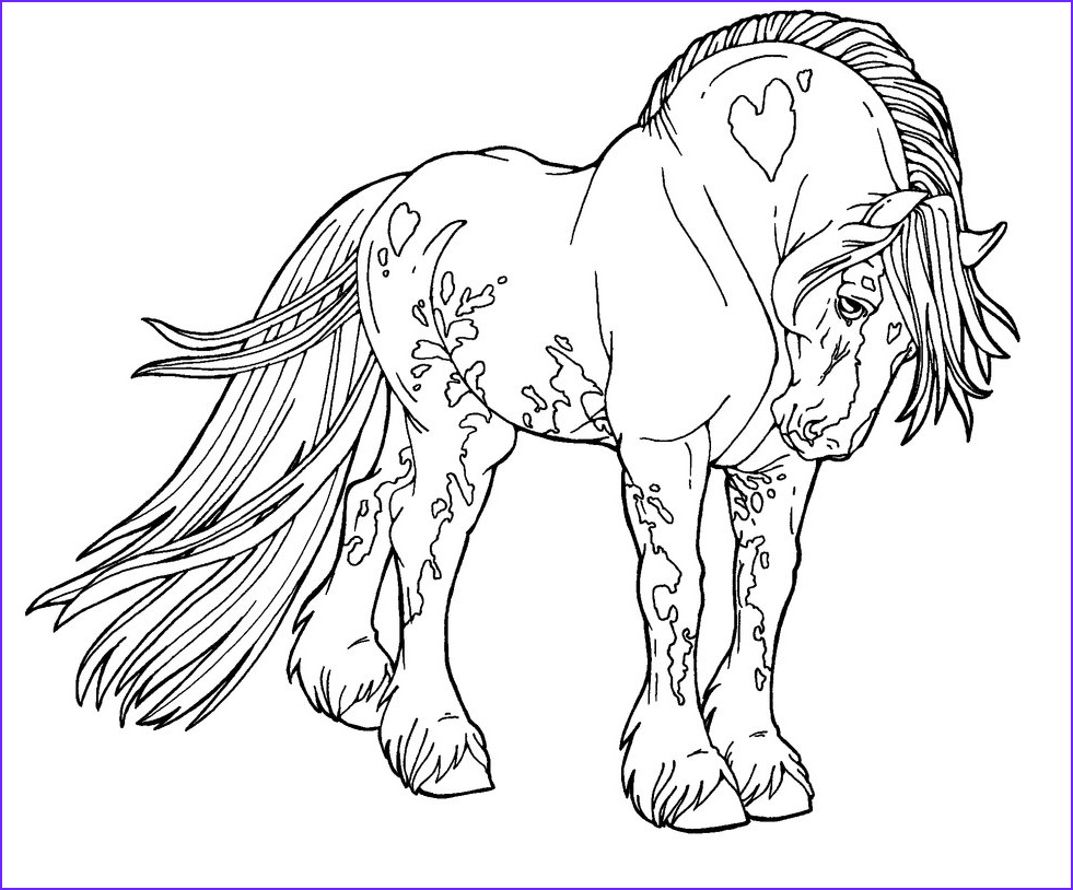 Free Lines Gypsy Drum Horse
