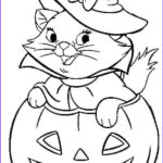 Halloween Coloring Pages To Print Unique Photos Pin By Samantha Olschewski On Coloring Pages
