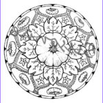 Halloween Mandala Coloring Pages New Photography Best 25 Halloween Mandala Ideas That You Will Like On