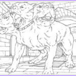 Harry Potter Adult Coloring Books Cool Photos 17 Best Images About Coloriage Harry Potter On Pinterest