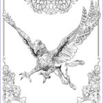 Harry Potter Adult Coloring Books New Stock Adult Colouring Book Wizards Can Now Their Wands On A