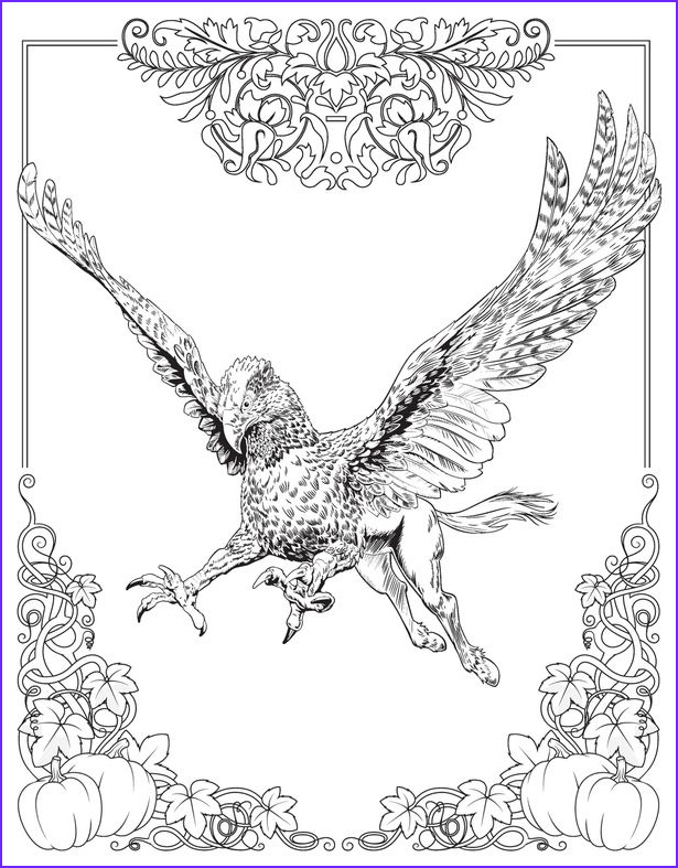 adult colouring book wizards can