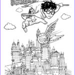 Harry Potter Coloring Beautiful Stock Harry Potter Harry Pottermore Pinterest