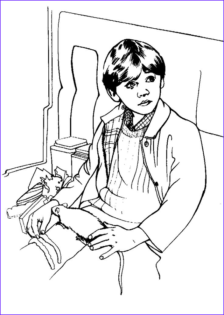 Harry Potter Coloring Books Luxury Images 68 Best Images About Harry Potter Kid S Club On Pinterest