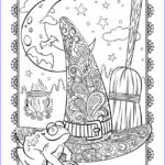 Hats Coloring Page Best Of Image Witch S Hat Coloring Page
