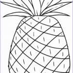 Hawaii Coloring Pages Awesome Stock Luau Free Coloring Pages Coloring Home