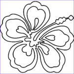 Hawaii Coloring Pages Elegant Photography 70 Best Images About Summer Camp Hawaii On Pinterest