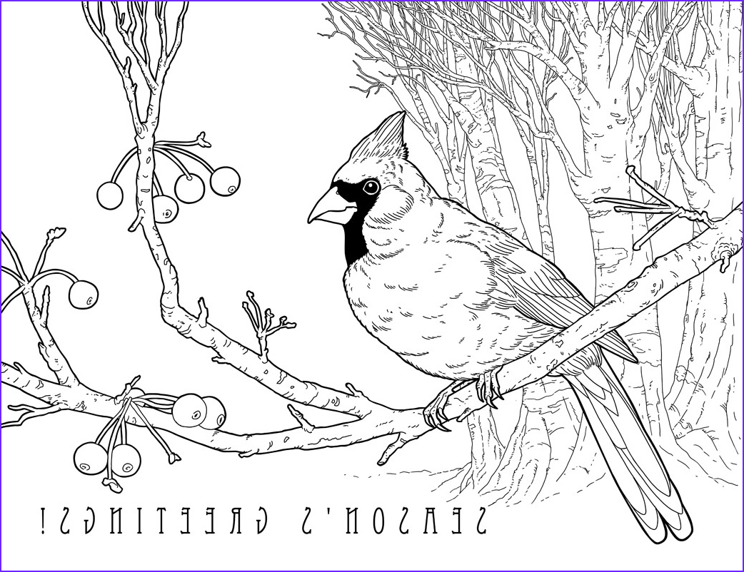 illustrated christmas 25 holiday designs to color