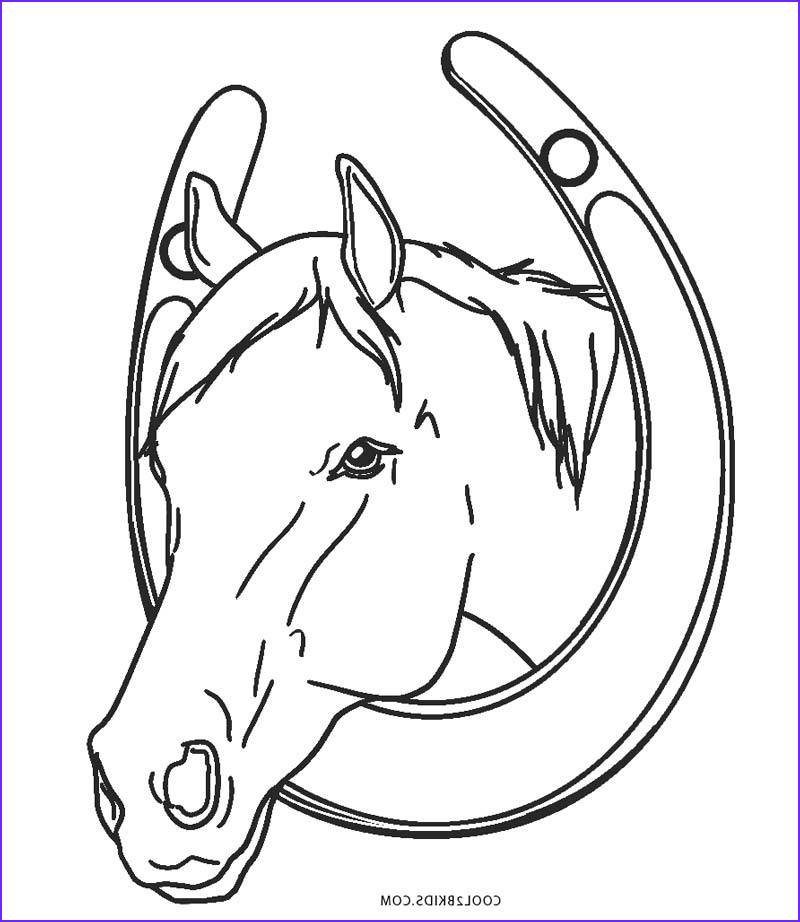 Horse Coloring Book Beautiful Photos Free Printable Horse Coloring Pages for Kids