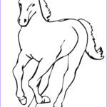 Horse Coloring Book Best Of Collection Horse Coloring Pages