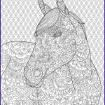 Horse Coloring Book For Adults Awesome Images Horse Coloring Page For Adults Adult Coloring Pages
