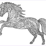 Horse Coloring Book For Adults Beautiful Collection Animal Coloring Pages For Adults Best Coloring Pages For