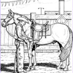 Horse Coloring Book For Adults Beautiful Images Fun Horse Coloring Pages For Your Kids Printable