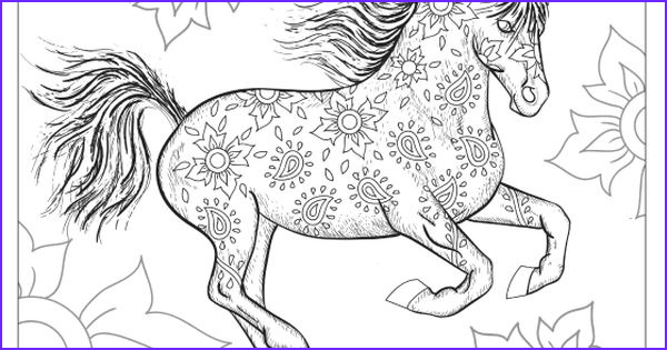 Horse Coloring Book for Adults Beautiful Images the Wonderful World Of Horses Adult Coloring Colouring