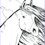 Horse Coloring Book For Adults Best Of Gallery Horse Coloring Pages For Adults Best Coloring Pages For Kids