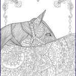 Horse Coloring Book For Adults Best Of Photos Gifts You Can Give To Those Who Love Horses