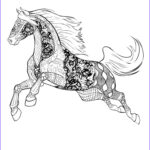 Horse Coloring Book For Adults Best Of Stock Horse Free Selah Works