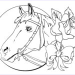 Horse Coloring Book For Adults Cool Stock Coloring Pages Horses Coloring Pages Free Coloring Pages