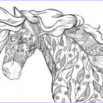 Horse Coloring Book For Adults Cool Stock Horse Coloring Pages For Adults Best Coloring Pages For Kids