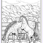Horse Coloring Book For Adults Elegant Gallery Horse Coloring Pages For Adults Best Coloring Pages For Kids