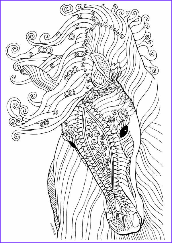 Horse Coloring Book for Adults Inspirational Stock Horse Coloring Page Illustration by Keiti