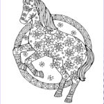 Horse Coloring Book For Adults Luxury Photos Adult Horse Coloring Pages